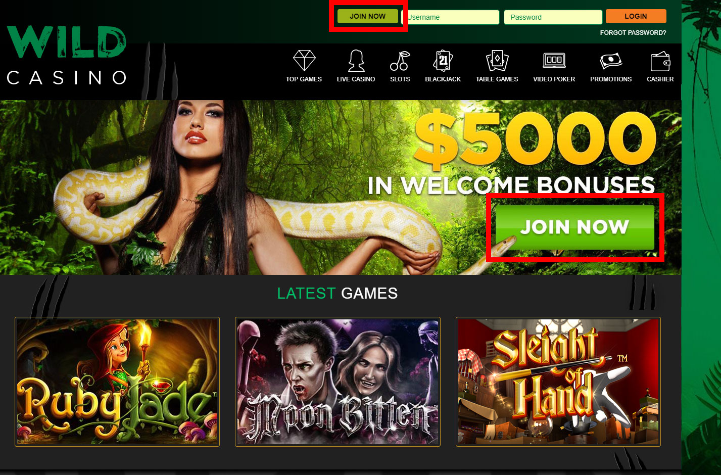 Register for a Free Account at Wild Casino