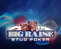 Big Raise Stud Poker Logo