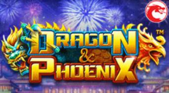 Wild Casino Dragon and Phoenix Online Slot