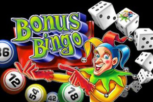 Red Dog Casino Specialty Games Bonus Bingo Logo