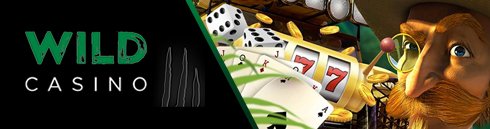 Wild Casino header logo