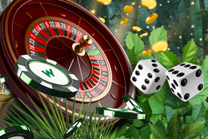wild casino feature image