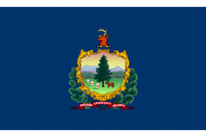 Vermont Gambling Laws State Flag Icon